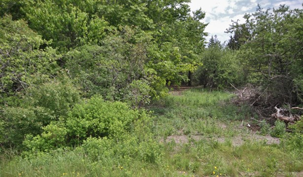 Mark Melanson Road, Little Brook Station, NS - CAN (photo 3)