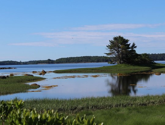 Martins Point Road, Martin's Point, NS - CAN (photo 1)