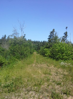 Lot Highway 217, Central Grove, NS - CAN (photo 3)