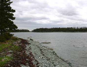 Land Calf Island, Ecum Secum, NS - CAN (photo 3)