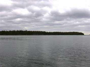 Land Calf Island, Ecum Secum, NS - CAN (photo 5)