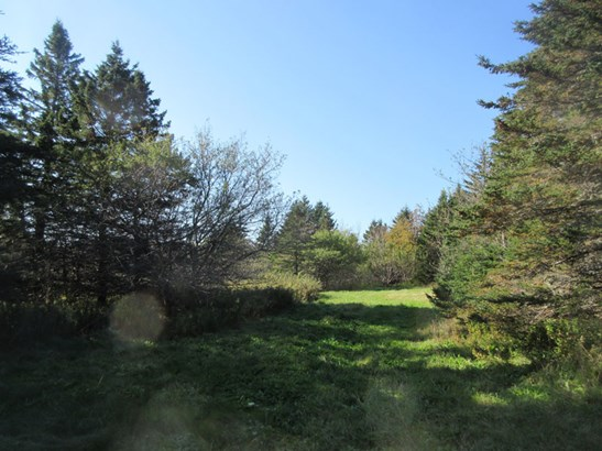 Highway 217, Waterford, NS - CAN (photo 4)