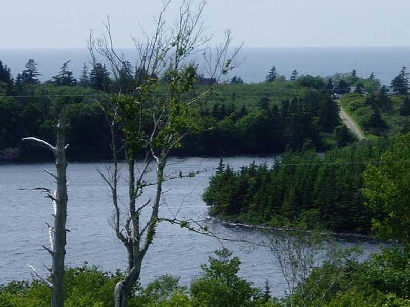 Lot 24 Twin Lakes Road, Port Maitland, NS - CAN (photo 2)