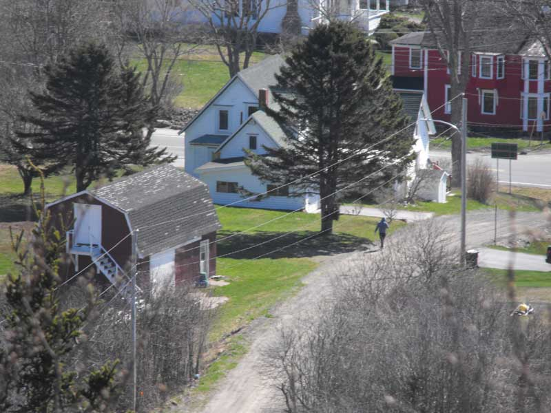 12 Tommys Branch, Little River, NS - CAN (photo 5)