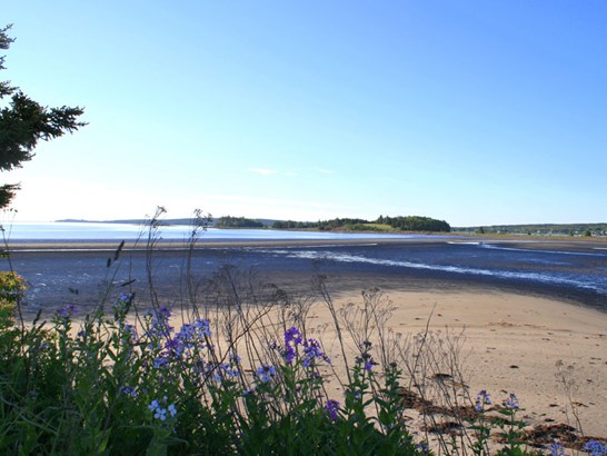 3325 Highway 332, Rose Bay, NS - CAN (photo 3)