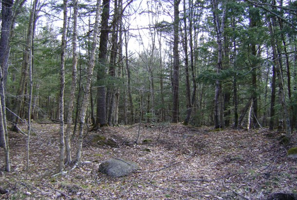Lot 49 East Covey Lake Road, Maitland, NS - CAN (photo 3)
