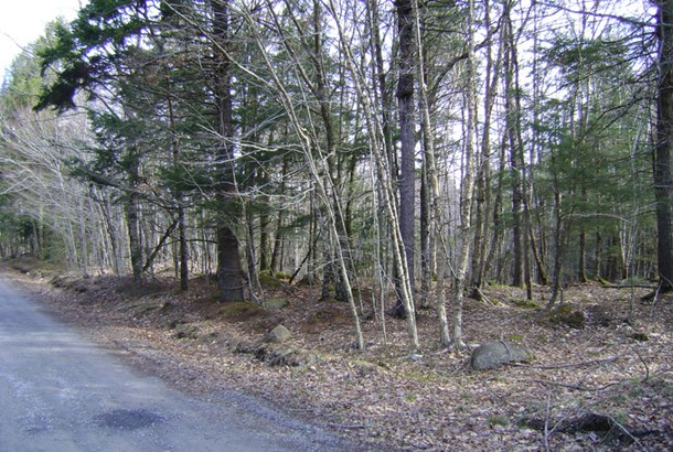 Lot 49 East Covey Lake Road, Maitland, NS - CAN (photo 4)