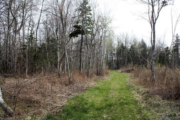 Lot 09-1 Highway 6, Wallace, NS - CAN (photo 4)