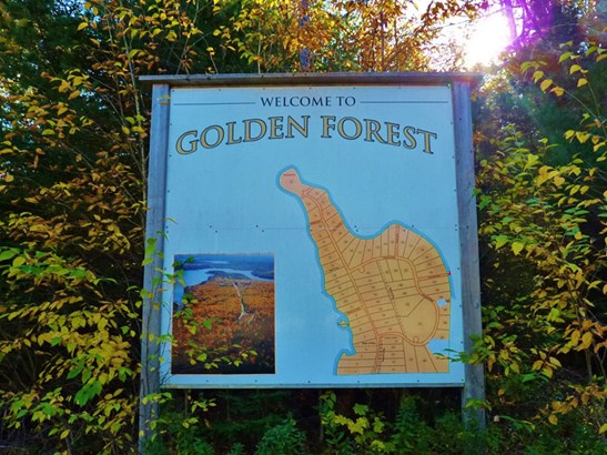 Lot Golden Forest Road, North Kemptville, NS - CAN (photo 1)