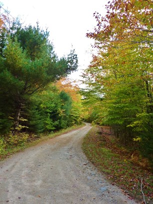 Lot Golden Forest Road, North Kemptville, NS - CAN (photo 3)