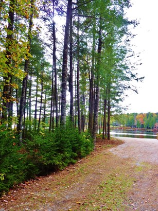 Lot Golden Forest Road, North Kemptville, NS - CAN (photo 4)