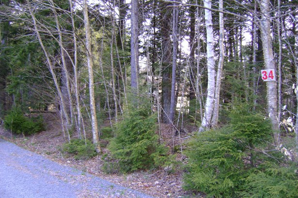 Lot 34 East Covey Lake Road, Maitland, NS - CAN (photo 4)