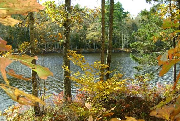 103 Lake Peter Lane, Elmwood, NS - CAN (photo 3)