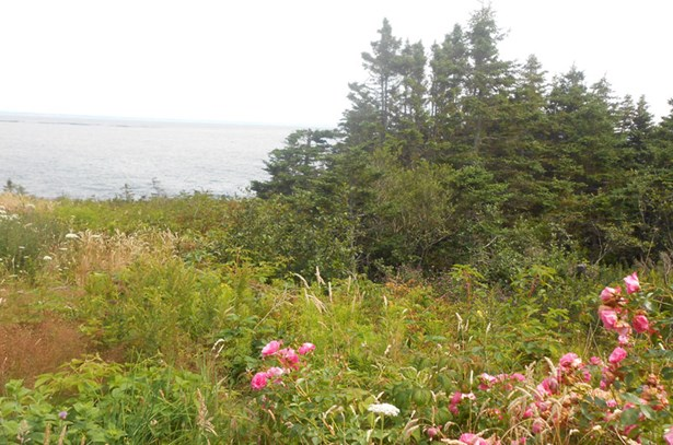 Lot 3 Southview Drive, Freeport, NS - CAN (photo 2)