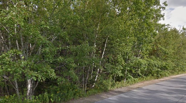 Lot 21 Forest Village Road, Simms Settlement, NS - CAN (photo 1)