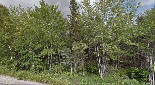 Lot 21 Forest Village Road, Simms Settlement, NS - CAN (photo 2)