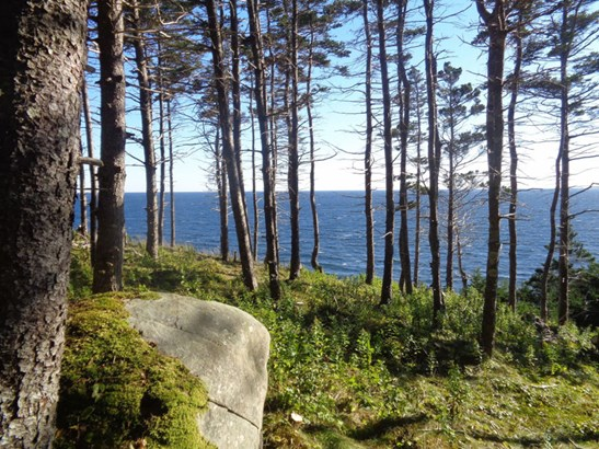 Holland Harbour Road, Holland Harbour, NS - CAN (photo 4)