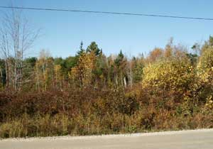 Lot 107 Chester Grant Road, Chester Grant, NS - CAN (photo 1)