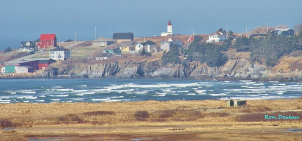 Cape St. Marys, Cape St Marys, NS - CAN (photo 3)
