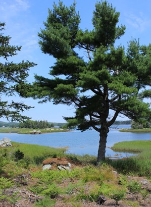 Indian Point Road, East Port Medway, NS - CAN (photo 5)