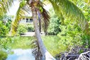 75' X 100' Waterfront Lot In Vista Del Mar Phase 2, Vista Del Mar, Ladyville - BLZ (photo 1)