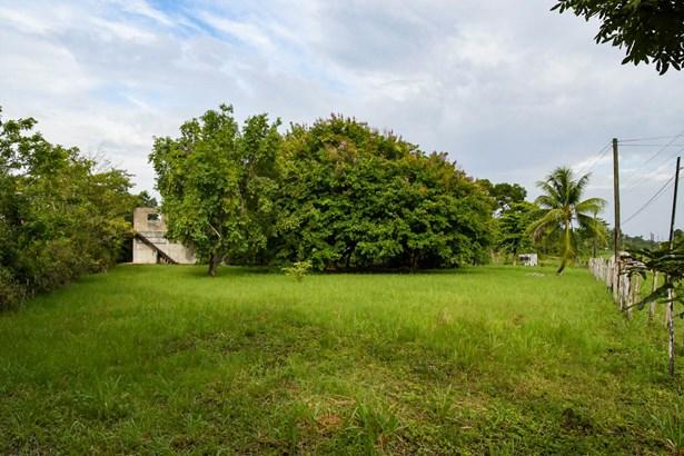 Sat-23-Acres-Toledo-Belize.jpg
