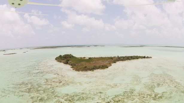 Turquoise Caye - BLZ (photo 3)