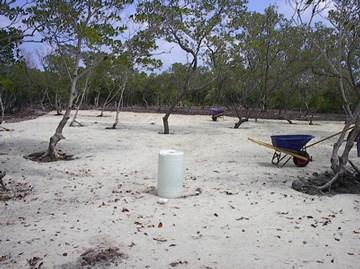 Cross Caye, Stann Creek District, Belize, Stann Creek - BLZ (photo 4)