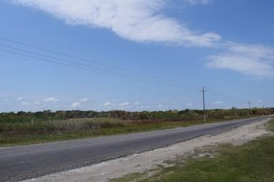 Philip Goldson Highway, Corozal District - BLZ (photo 1)