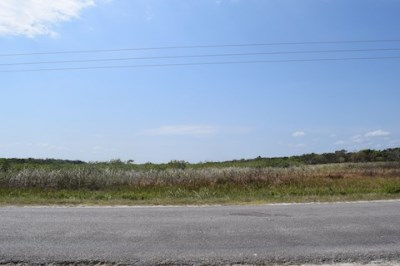 Philip Goldson Highway, Corozal District - BLZ (photo 3)