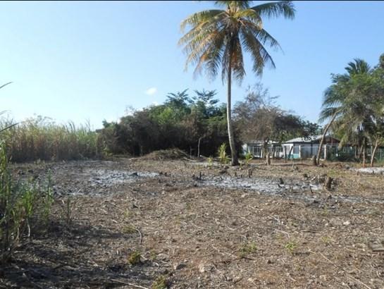 San Joaquin Village, Corozal - BLZ (photo 2)