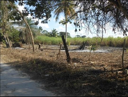 San Joaquin Village, Corozal - BLZ (photo 5)