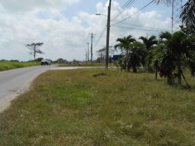 Santa Rita Layout, Corozal Town - BLZ (photo 2)