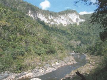 Black Rock - BLZ (photo 2)