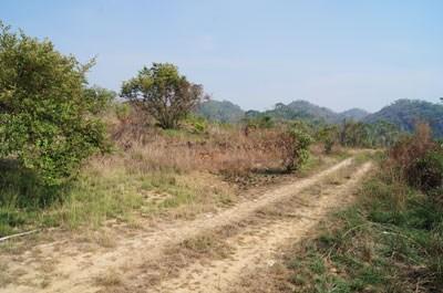 Lomas De Las Flores, Belmopan - BLZ (photo 4)