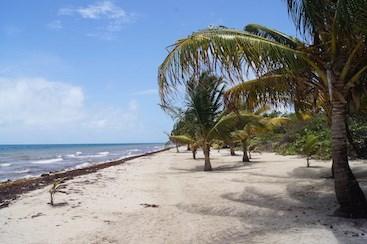 Cocoplum, Placencia - BLZ (photo 3)