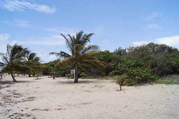 Cocoplum, Placencia - BLZ (photo 5)