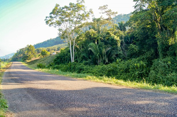 2620Acre20Property20on20Humming20Highway20South20of20Middlesex20Stann20Creek20Belize20001.jpg
