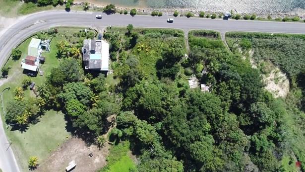 Punta Gorda Road, Cattle Landing Village, Punta Gorda Town - BLZ (photo 3)