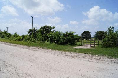 Old Northern Highway, Carmelita - BLZ (photo 3)