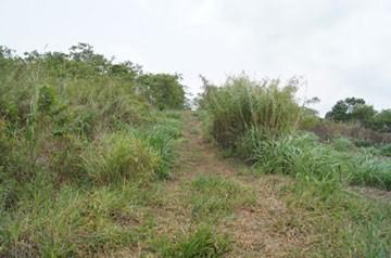 Vista Maya, San Ignacio Town - BLZ (photo 5)