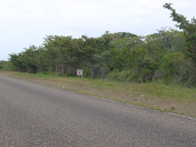Mile 33, Northern Highway, Biscayne - Crooked Tree Village - BLZ (photo 4)