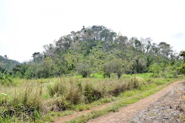 Belmopan, Belmopan City - BLZ (photo 1)