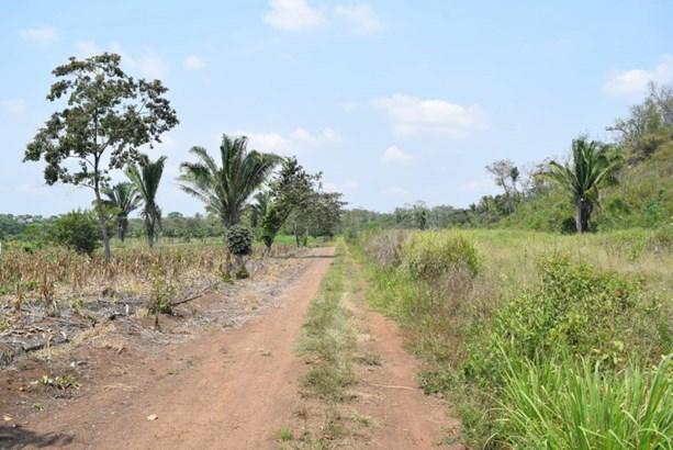 Belmopan, Belmopan City - BLZ (photo 5)