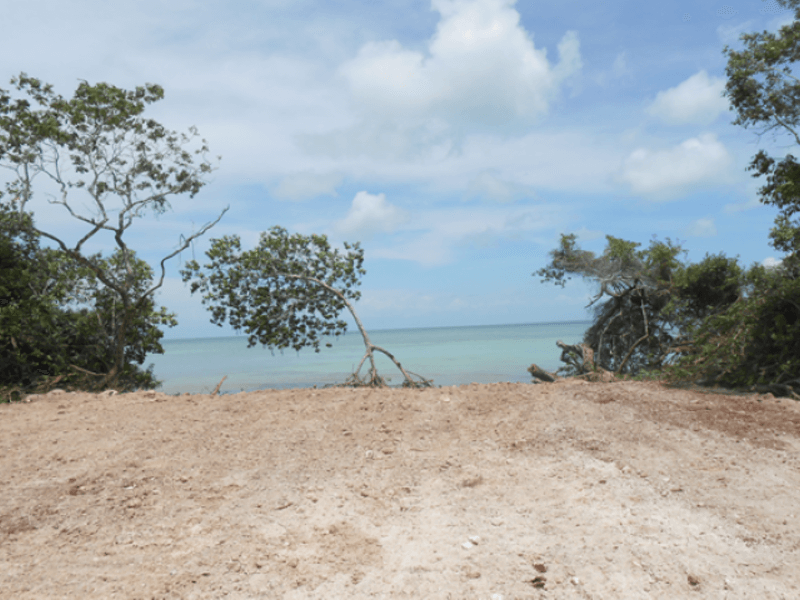 Along Corozal Bay, Sarteneja - BLZ (photo 3)