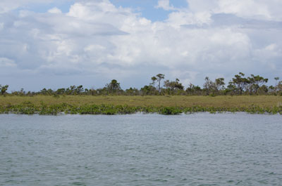 7 Miles Southwest Of Placencia And 3.5 Miles North, Mile 19 Southern Highway - BLZ (photo 2)