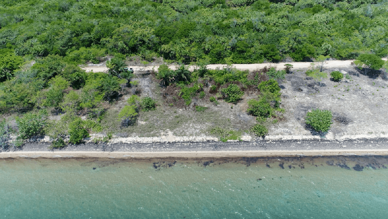 Lot 36, Mayacan - BLZ (photo 2)