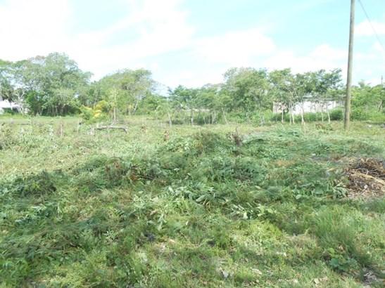 475 Ft West Of Corozal Bay Next To Corozal Town, Finca Solana Area - BLZ (photo 1)