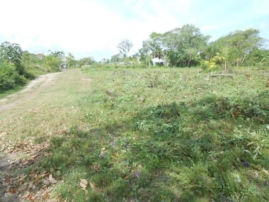475 Ft West Of Corozal Bay Next To Corozal Town, Finca Solana Area - BLZ (photo 2)