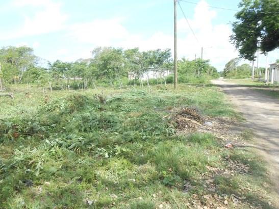 475 Ft West Of Corozal Bay Next To Corozal Town, Finca Solana Area - BLZ (photo 3)